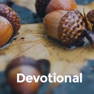 default_devotional