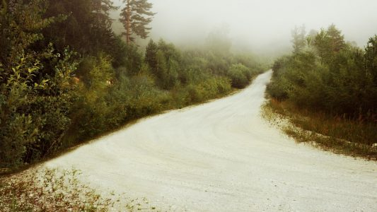 public-domain-the-road-in-the-woods