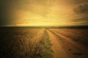 Public Domain road-in-a-field